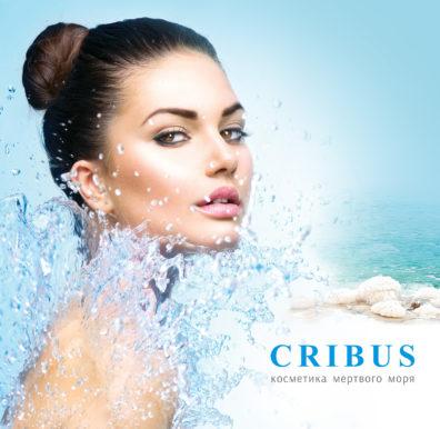 Разработка логотипа Cribus